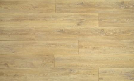 Grand Selection Evolution Oak - Gold