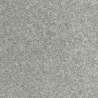 Stainfree Bella Twist Carpet - Graphite 04