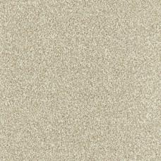 Stainfree Bella Twist Carpet - Biscuit 15