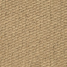 Aruba Textured Wool Loop Carpet - Beige