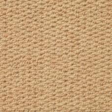 Aruba Textured Wool Loop Carpet - Biscuit