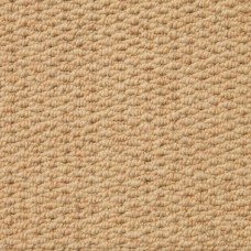Aruba Textured Wool Loop Carpet - Biscuit