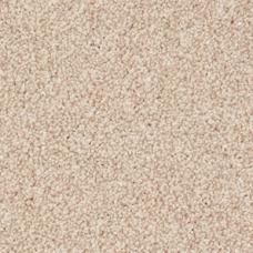 Rosneath Saxony Carpet - Seahorse