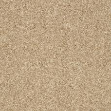 Soft Sensation Saxony Carpet - Honey Glow 76