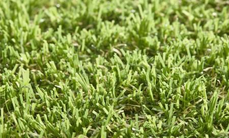 Anica 30mm Grass