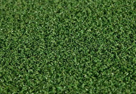 Play 12mm Putting Grass