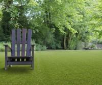 Poppy 35mm Grass