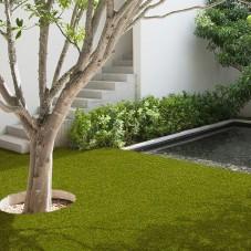 Valeria 40mm Grass