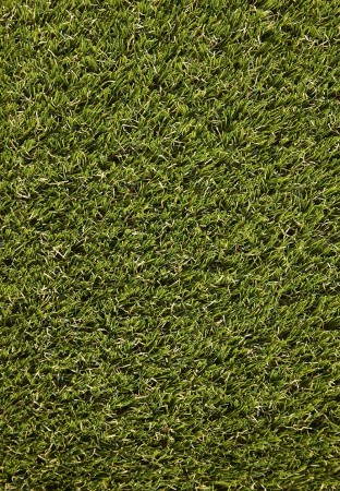 Vinca 30mm Grass