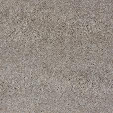 Paramount Twist Carpet - 785 Dark Tan