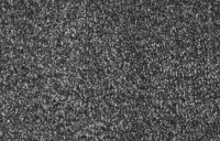Pearl Saxony Carpet - Iron Mountain 314