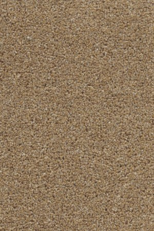 Ultimate Harvest Heathers Twist Carpet - Almond
