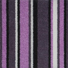 Funky Stripe - Purple & Pink Carpet