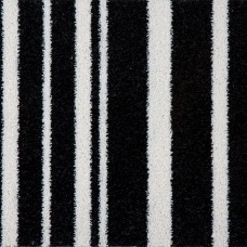 Funky Stripe - Black and White Carpet
