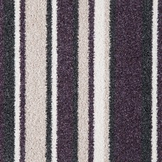 San Diego Stripes - Purple
