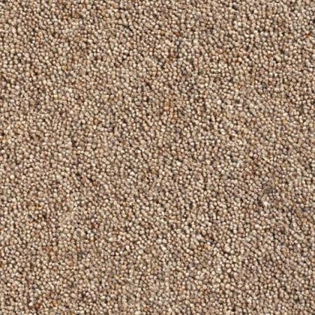 Catania 45oz Wool Twist Carpet - Digestive