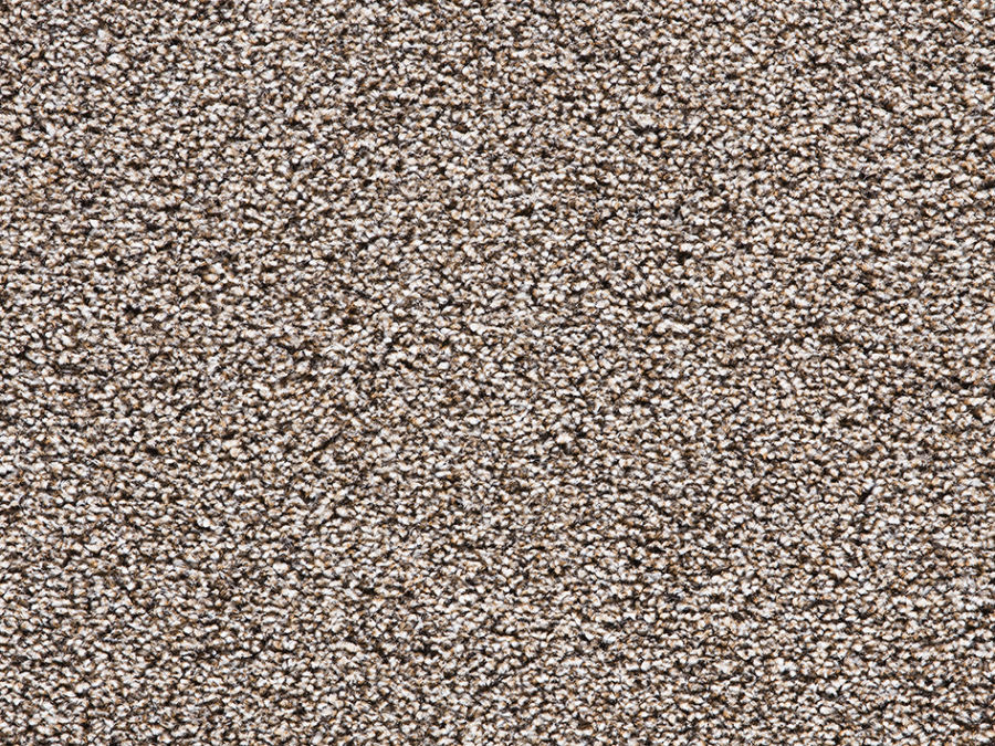 This Stain Resistant Saxony Carpet Is A Popular Choice For